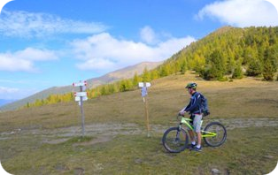 Maxwebtrento in Mountain Bike